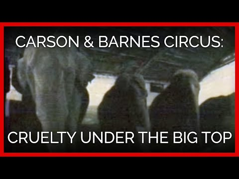 Carson & Barnes Circus: Cruelty Under the Big Top