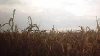 Native American Corn Dance Song