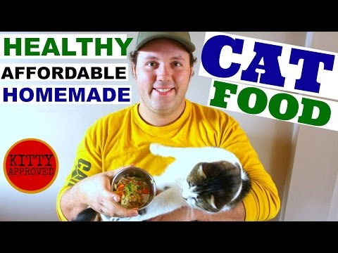 Quick & Easy, Healthy, Affordable CAT FOOD