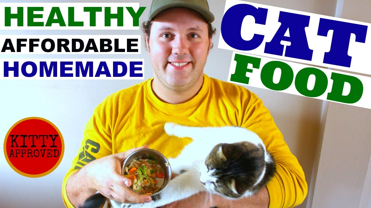 Quick easy healthy affordable cat food youtube forumfinder Image collections