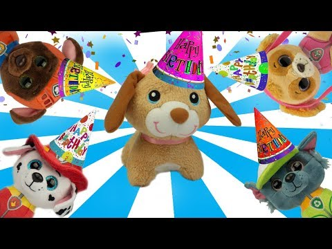 Paw Patrol Pups Get Goody Bags at a Birthday Party Learn Colors Video