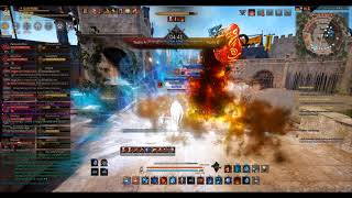 Reborn vs Top - friendly match - Arena of Arsha - Black Desert Online