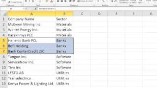 VBA Programming Data Filter - Excel VBA - Visual Basic Tutorials