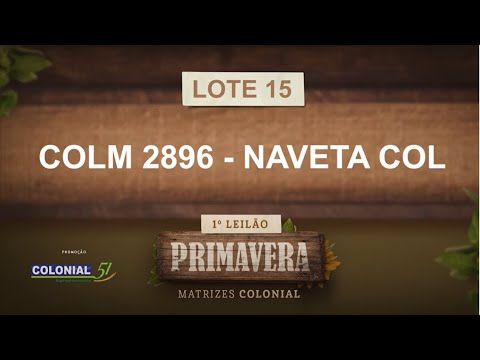 LOTE 15   COLM 2896