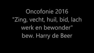 Zing, Vecht, Huil, Bid, Lach, Werk & Bewonder (Harry de Beer)
