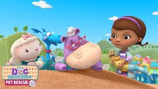 Pet Rescue: Dig It | Doc McStuffins | Disney Junior