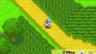 Harvest Moon - Friends of Mineral Town - Vizzed.com Play - User video