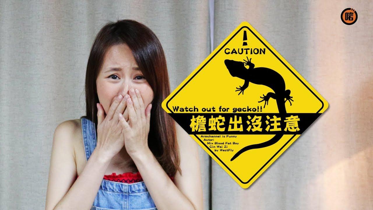 【檐蛇出沒注意!】 - YouTube