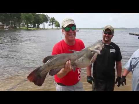 Bend Area Care Spring Catfish Tournament from YouTube · High Definition · Duration:  1 minutes 6 seconds  · 35 views · uploaded on 6/8/2014 · uploaded by The Draggon