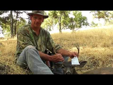 Hunting Knoxville Public Lands - Video Services In Vacaville