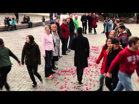 Ronniel & Dustin's Marriage Proposal Flash Mob