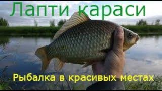 Ловля КРУПНОГО карася в красивейших местах Запорожской обл