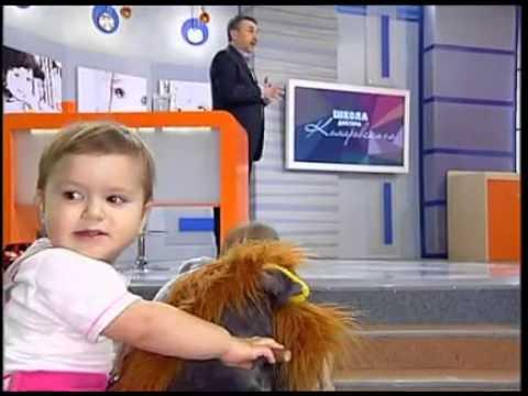 Кишечные инфекции - Школа доктора Комаровского - Интер