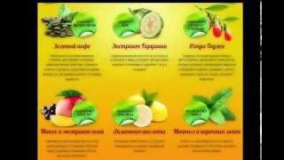 Спрей для похудения fitospray эффективен для похудения [Фито спрей для похудения отзывы]