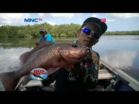 Full HD! MIMIX INDONESIA CUP 2017 With MATA PANCING MNCTV