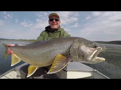 Ice Out Lake Trout On Great Slave Lake | Frontier Fishing Lodge, Northwest Territories