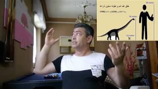 لماذا الدولة المغربية مصرة على بناء مسجد كل يومين ؟