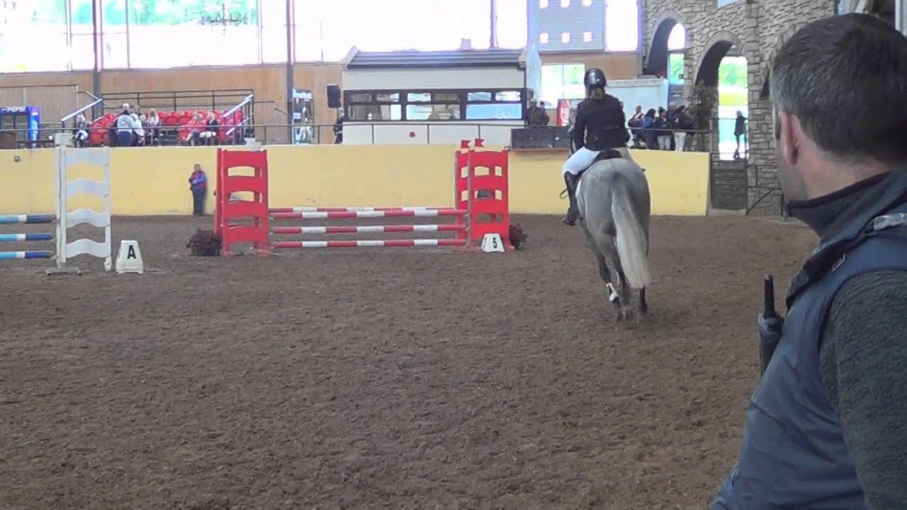 Drumfin Silver Lining At Cavan Equestrian Centre 80cm