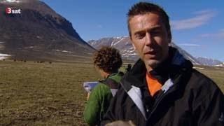 Steffens entdeckt Grönland Eisige Wildnis Doku (2017)