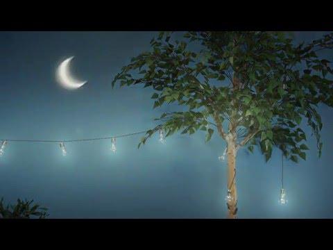 Fyll trädgården med hängande glödlampsformade solcellslampor