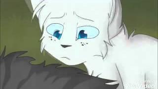 Коты воители-смерти [2 часть]₩¥