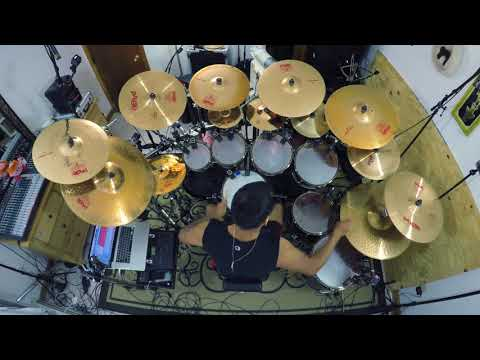 Gojira - The Art of Dying (Drum Cover)