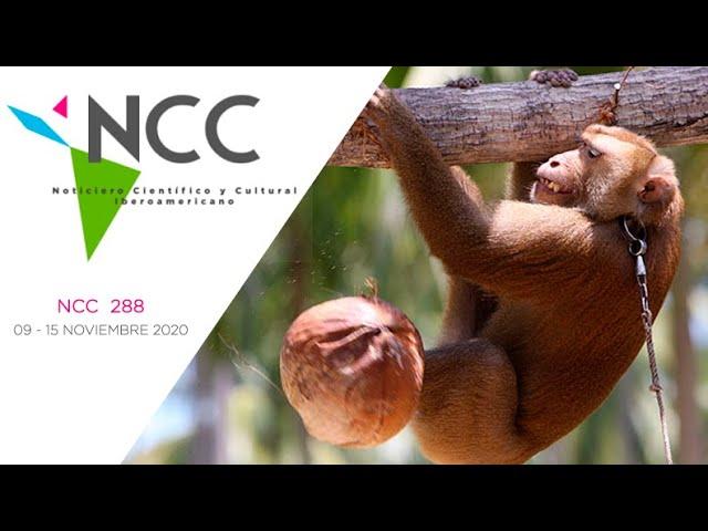 Noticiero Científico y Cultural Iberoamericano, emisión 288. 09 al 15 de Noviembre 2020