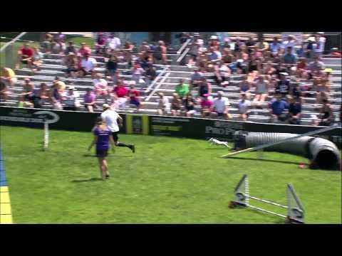 Small Dog Agility 1st Place - Incredible Dog Challenge 2015 Boston, MA