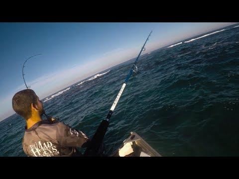 Herring, Squid And Southern Barracuda... Lure Fishing Perth, Western Australia. (IZS Ep.3)
