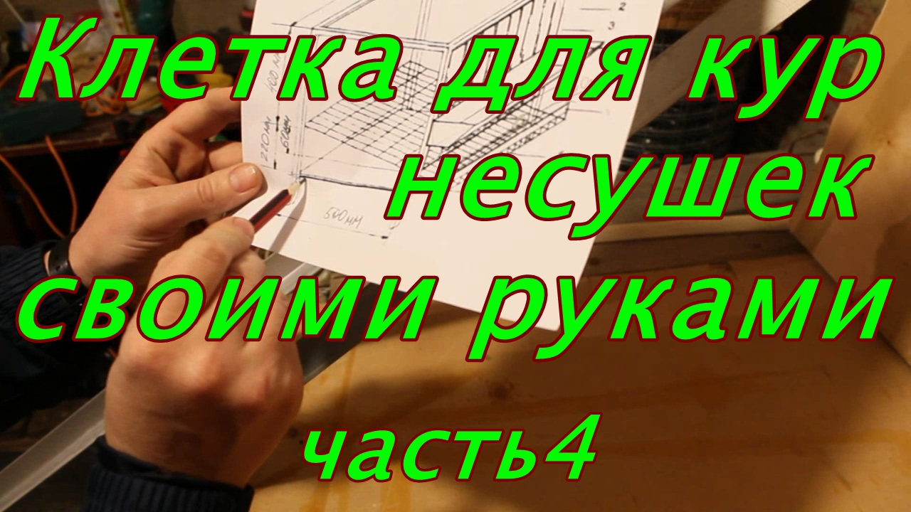Клетки для кур несушек, бройлеров своими руками - zolotyeruki .