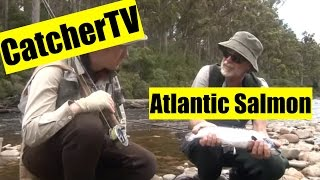 Catcher TV Ep. 4: Atlantic Salmon on the Huon River, Tasmania
