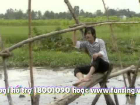 Dao phi duong