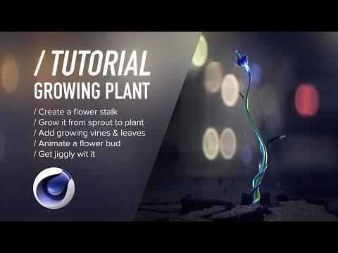 ( / ) C4D TUTORIAL - Growing Plant