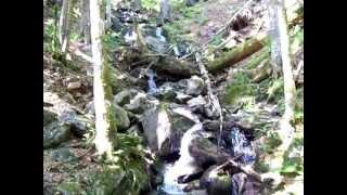 Wasserfall am Feldsee - Feldberg Schwarzwald