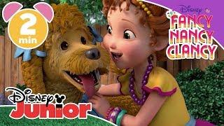 Fancy Nancy Clancy | How To Make Your Dog Fancy 🐕 | Disney Junior UK