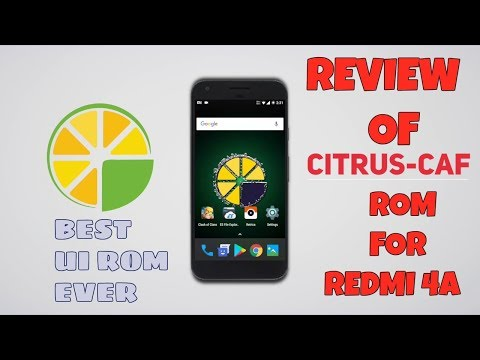 Citrus-caf tagged Clips and Videos ordered by Relevance