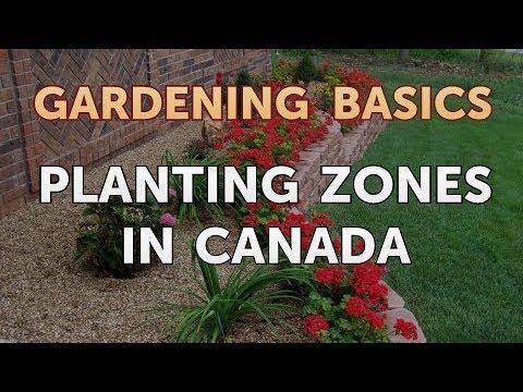 Planting Zones In Canada