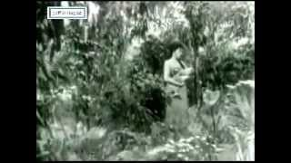 OST Dayang Senandong 1965 - Petikan lagu 5