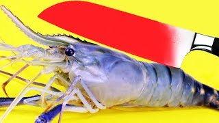 Glowing 1000 Degree KNIFE vs TIGER PRAWN Cooking EXPERIMENT