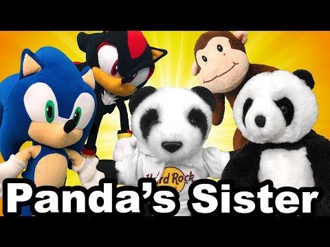 TT Movie: Panda's Sister