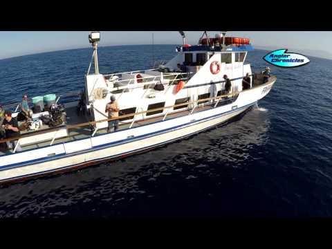 Davey's Locker Sportfishing & Whale Watching