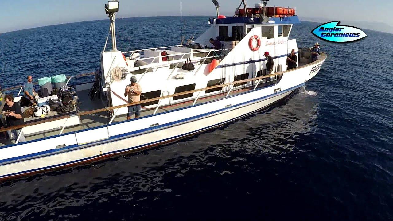 Davey S Locker Fishing Newport Beach