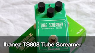 Ibanez TS808 Tube Screamer | LESSON on the evolution of distortion pedals)