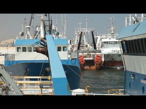 Lifeblood Of Namibia: Thriving Fisheries