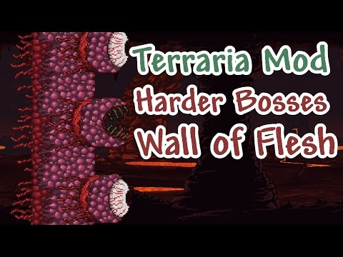 tModLoader Test - Spirit of Purity Boss | FunnyDog TV