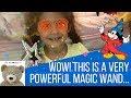 #1 THE BEST MAGIC... These Magic Spells Are Amazing!