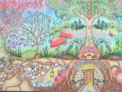 Completed Enchanted Forest Colouring Book A Flip Through