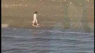 PV-野川さくら 幸せレシピ 野川さくら 検索動画 27