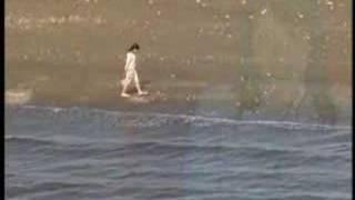 PV-野川さくら 幸せレシピ 野川さくら 動画 27