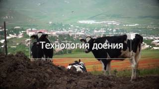 мастер-класс по зоотехнии, КЦ АВМ, Украина
